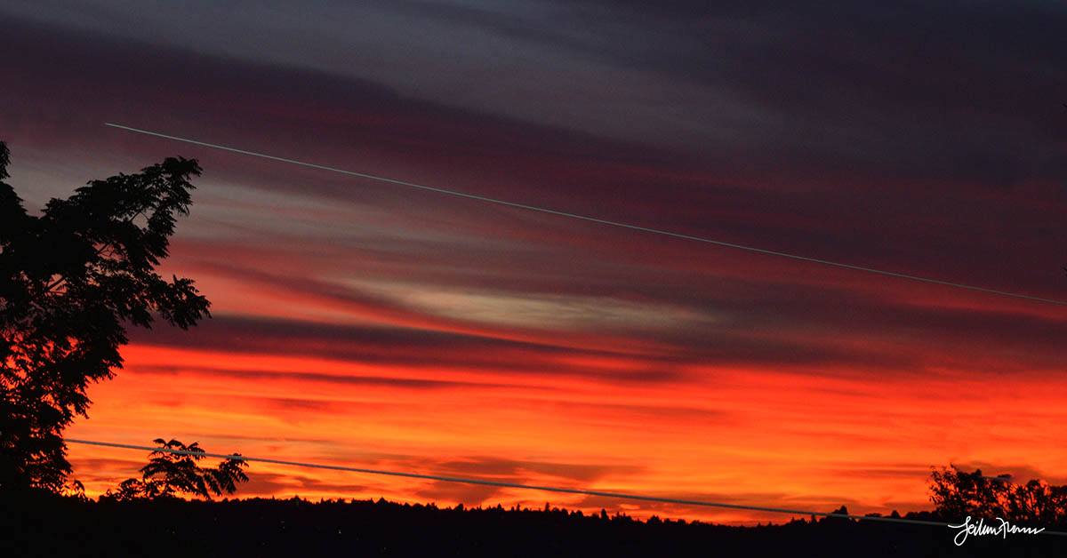 Sunset by Leilani Norman